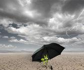 Fényképek Védelme a mezőgazdaság