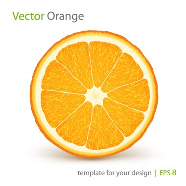 Vector fresh ripe orange