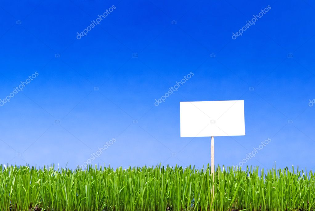 Blank white sing on neatly trimmed green grass against a blue ba