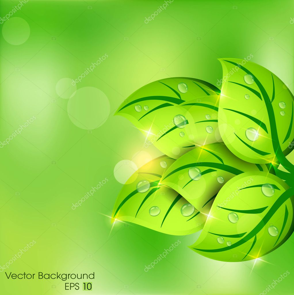 Green leaves abstract background. EPS 10.