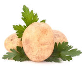 Photo Potato and parsley leaves