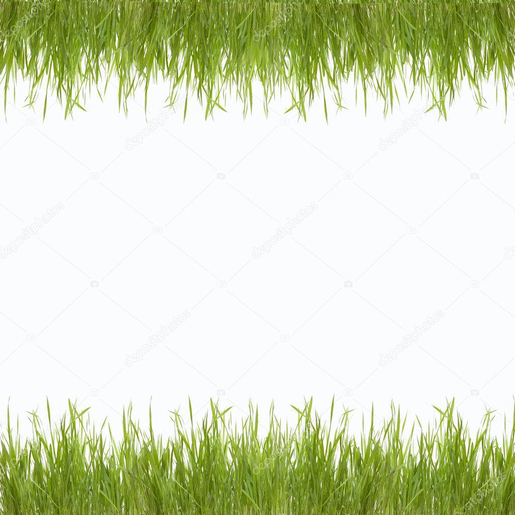 abstrakt gr n natur hintergrund mit gras stockfoto osalenko 12209154. Black Bedroom Furniture Sets. Home Design Ideas