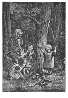 Children pick up mushrooms in the woods