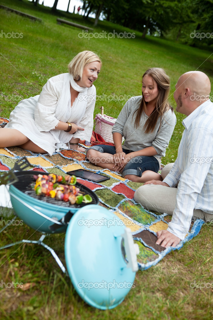 Barbecue Picnic in Park