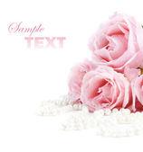 růže a perly