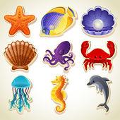 Fotografie moře zvířata ikony