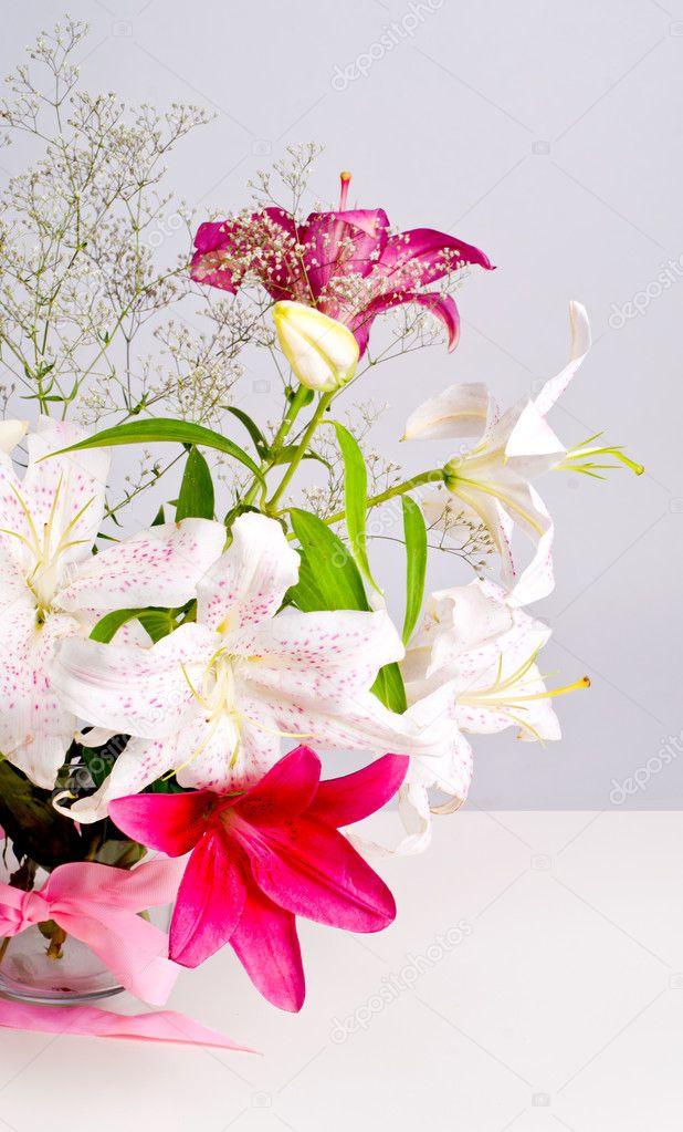 Blumen weiß und rosa Lilie — Stockfoto © Vasilek #11798015