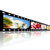 Filmstrip with flowers pictures over white