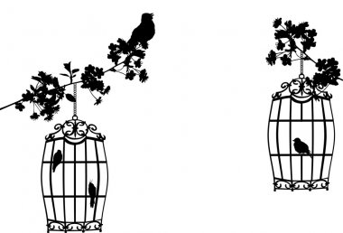 tree branches and birds in cages on white