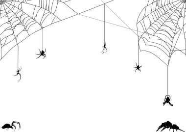 seven spiders in web illustration