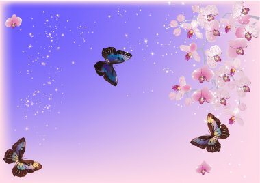 three butterflies and pink orchids
