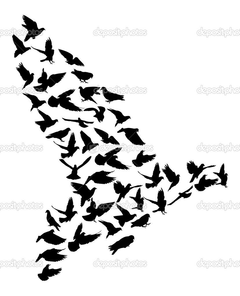 Stock Vector Dr Pas 6261329: Complicated Pigeon Silhouette