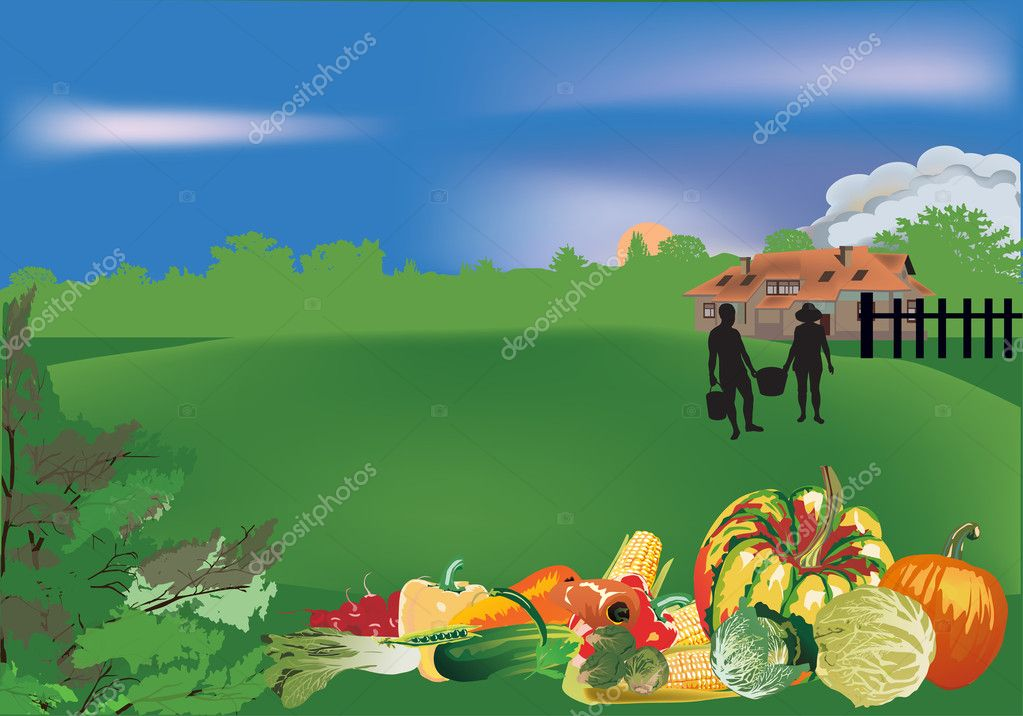 Фотообои vegetables on country landscape background