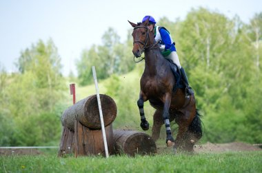 Cross-country. Disobedience (zakidka) horse