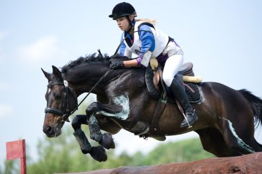 Equestrian sport. Woman rider eventer on horse negotiating cross-counry fence Log fence