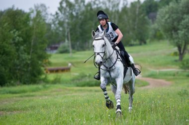 Equestrian sport. Eventer on horse riding gallop