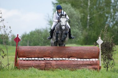 Equestrian sport.  Eventer on horse negotiating cross-country Fixed obstacle Log fence