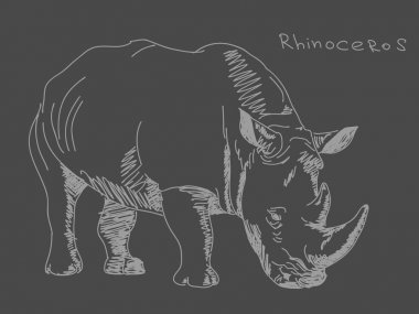 Hand drawn rhino Vector