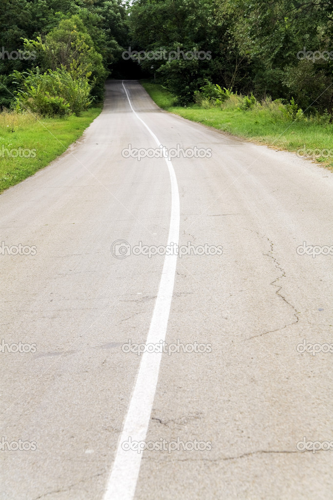 Country road with marking line in greens environment