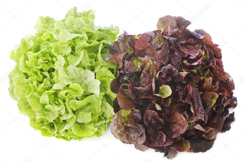 Salat grun und rot
