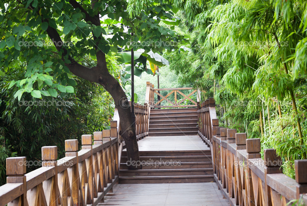 Wooden footbridge throught bamboo garden