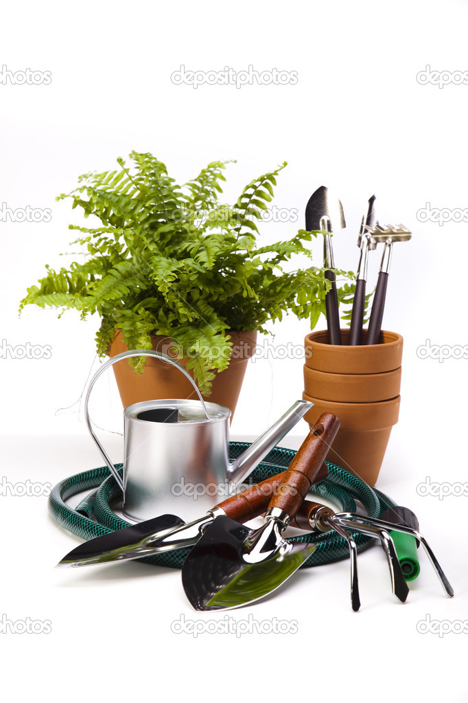 Flower and garden tools on white background