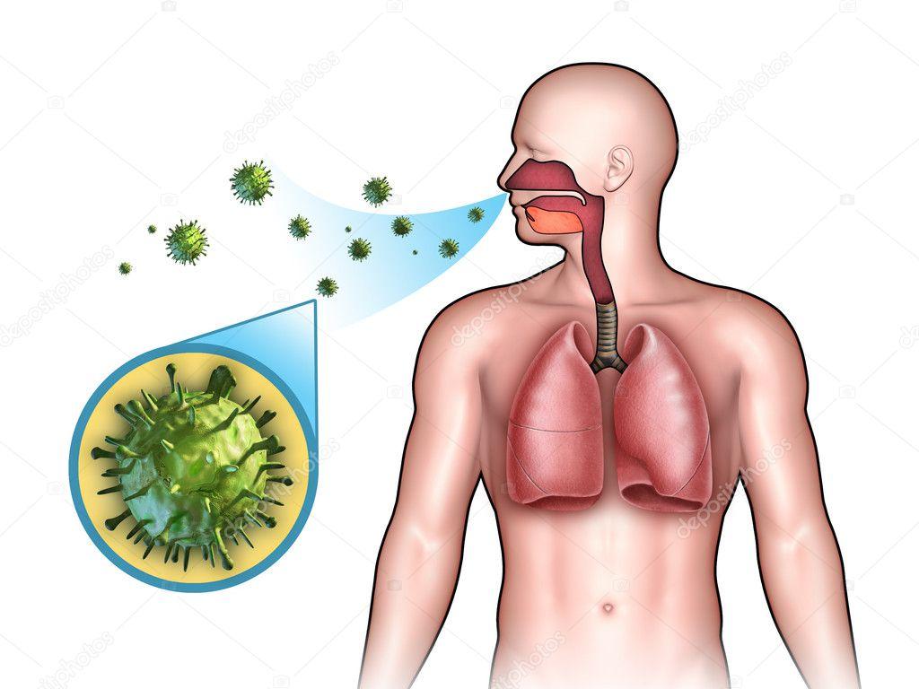 Afbeeldingsresultaat voor virale infectie
