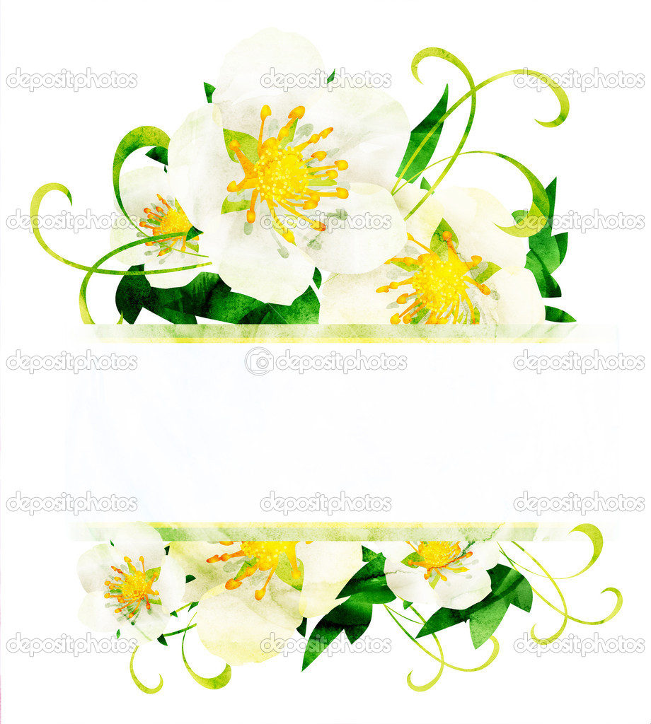 Watercolor white wild roses flowers border isoleted on white