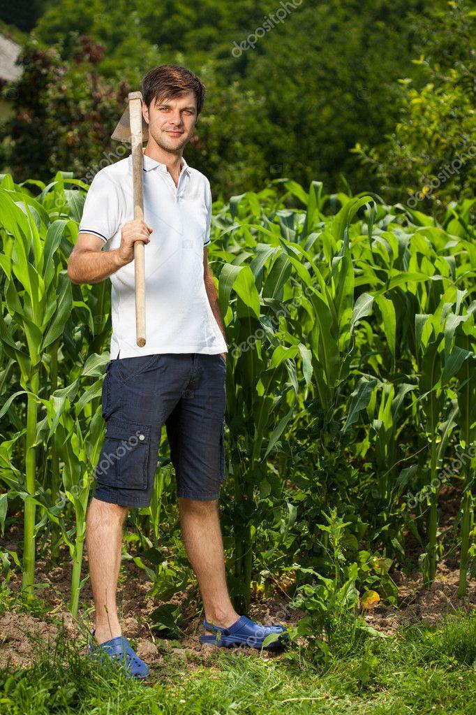 Junger landwirt bei der arbeit  Landwirt in der Nähe von einem Maisfeld — Stockfoto #11540232