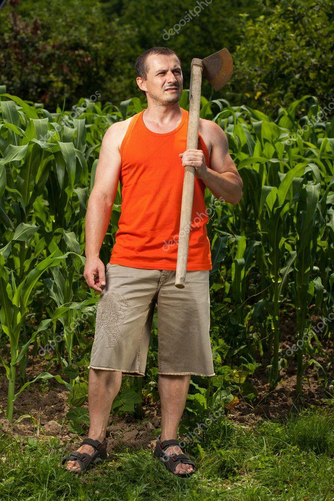 Junger landwirt bei der arbeit  Junger Landwirt in der Nähe von einem Maisfeld — Stockfoto ...