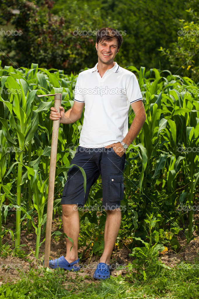Junger landwirt bei der arbeit  Landwirt in der Nähe von einem Maisfeld — Stockfoto #11688783