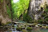 fiume in montagna