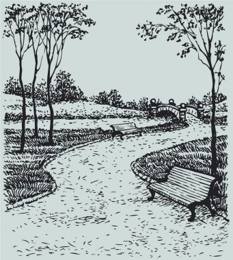 Vector landscape. Benches along the paths of park