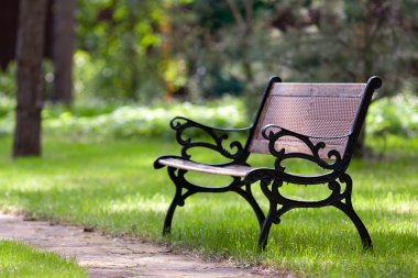 Stylish bench in park