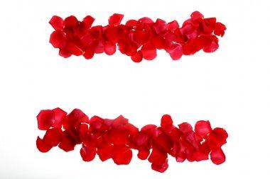Red rose petals forming symbols