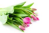 Kytice růžových Holandské tulipány
