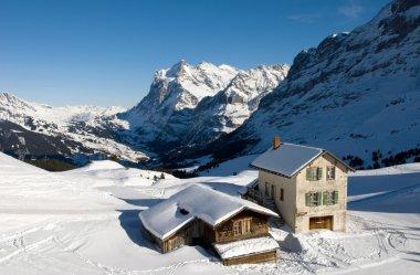 Chalets in Kleine Scheidegg, near Grindelwald, Switzerland stock vector