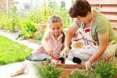 Fotografie Kind hilft durch Neubepflanzung