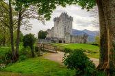 Photo Ross Castle near Killarney