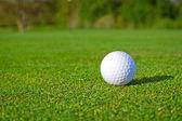 golfový míček na trávě