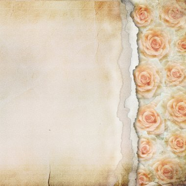 Old Torn Paper Background. Texture with a Roses