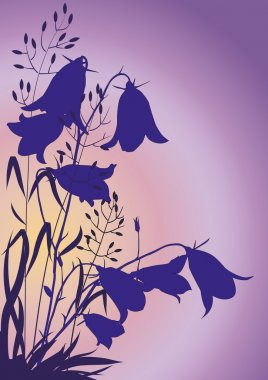 Silhouettes of flowers and herbs on the background of the morning sky stock vector