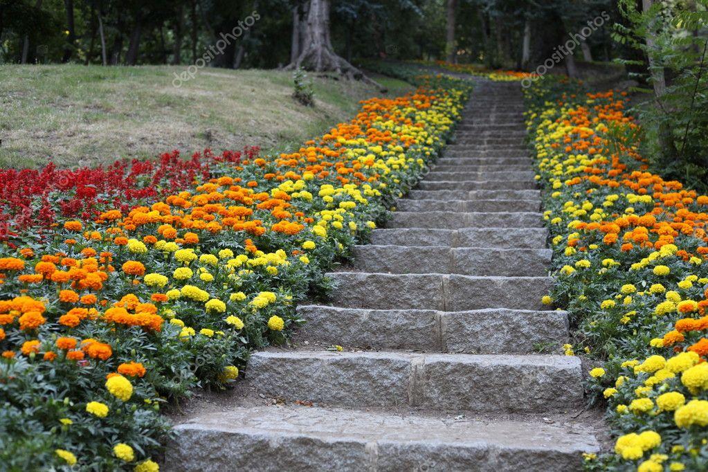 Pierre naturelle am nagement paysager de jardin la maison avec des escalier - Amenagement mur jardin ...