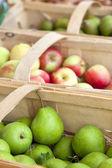 ovoce trh