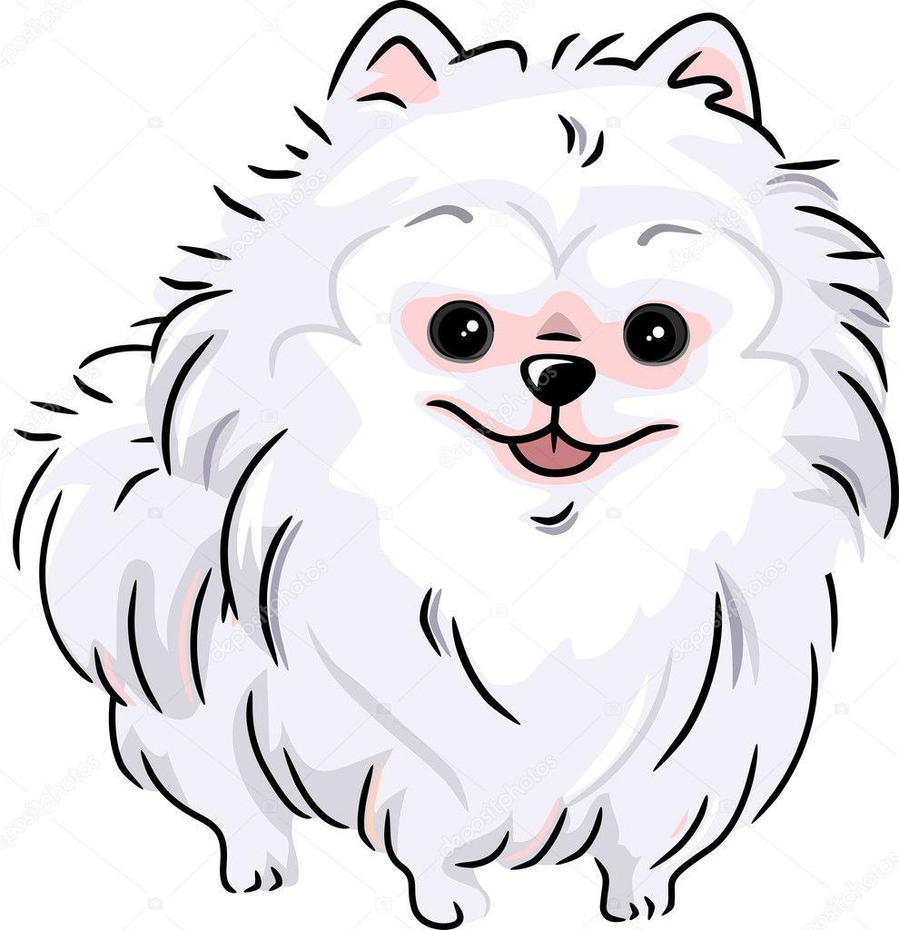 Pomerania blanco — Foto de stock © lenmdp #11129007