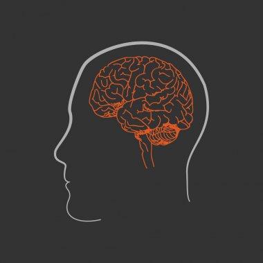 HumanBrain