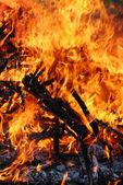 closeup červený oheň hoří