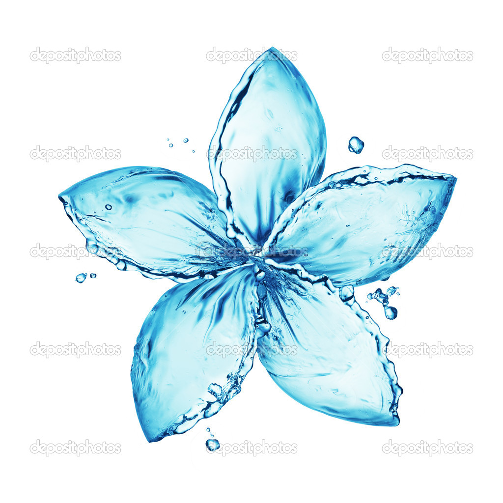 Water splash,flower