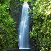 škvíra falls, hrabství antrim, Severní Irsko
