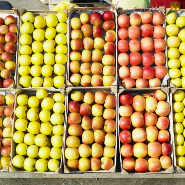 Apples, Serbia